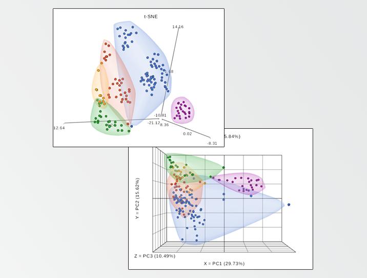 tCNE & PCA plots