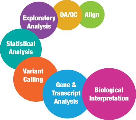With Partek Discovery Services, we will align your data, perform QA/QC, exploratory analysis, statistical analysis, variant calling, gene and transcript analysis, and biological interpretation.