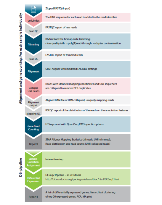 Lexogen QuantSeq-UMI pipeline protocol