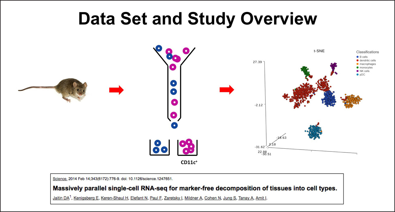 http://Single%20Cell%20Analysis%20-%20Identifying%20Group%20Biomarkers